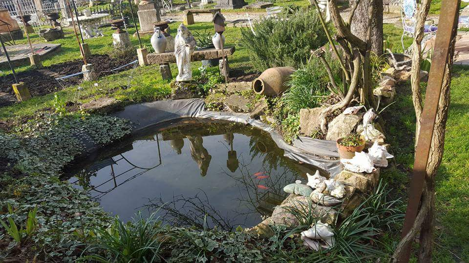 bassin à poisson à Mâcon
