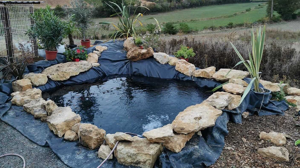 bassin d'ornement à Verzé
