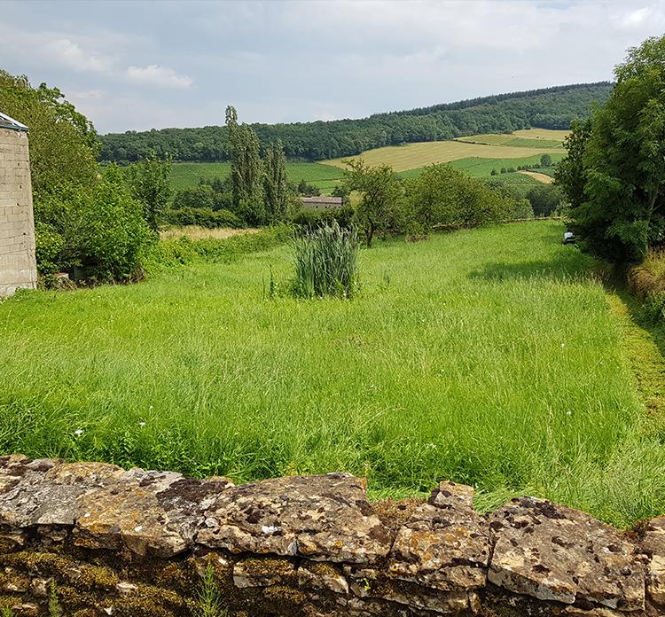 terrain à tondre à Cluny